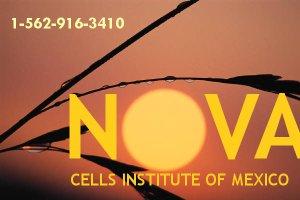 NOVA CELLS SUN GRAPHIC - JULY 2013