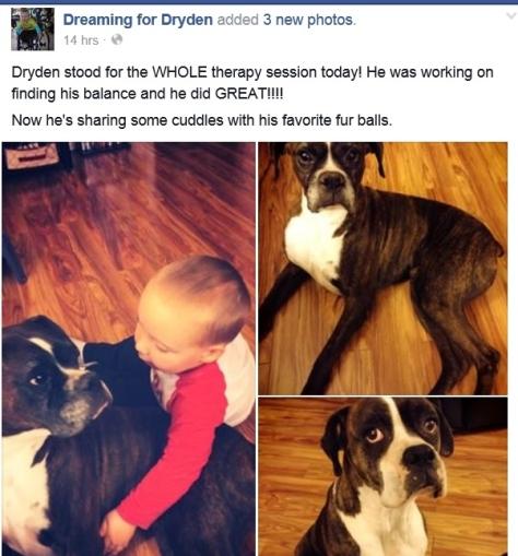 Drygen update - 2-26-2015 Facebook
