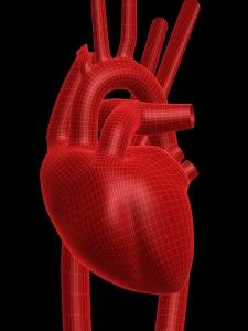 HEART - FREE MS