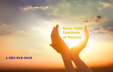 Nova Cells Banner